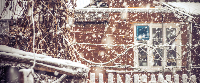 Don't get left out in the Cold this Winter. Call Greco and Haines to make sure your well water system is protected.